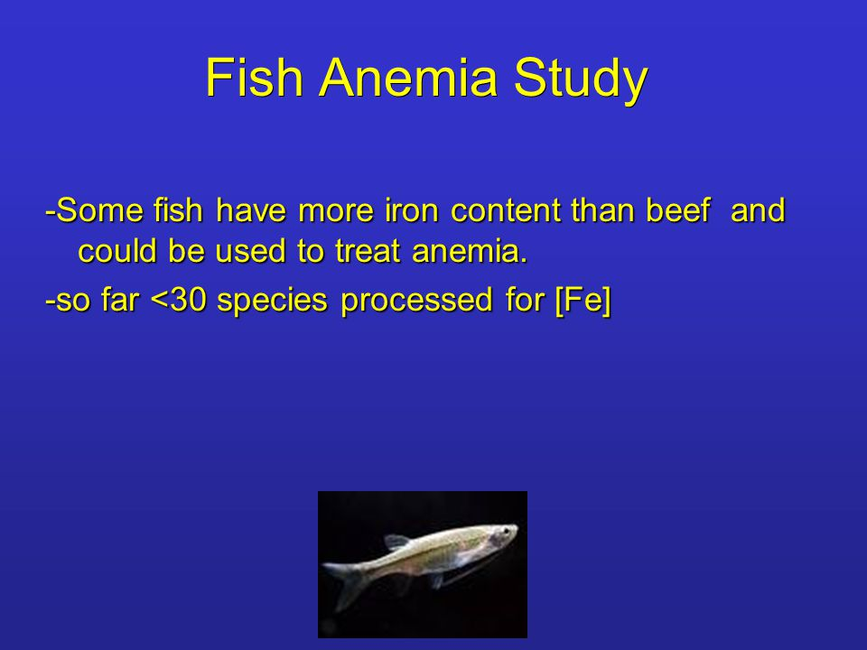 Fish Anemia Study -Some fish have more iron content than beef and could be used to treat anemia.