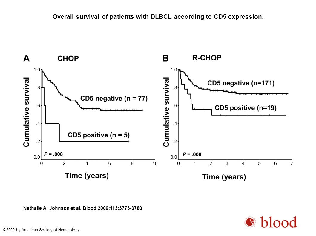 Overall survival of patients with DLBCL according to CD5 expression.