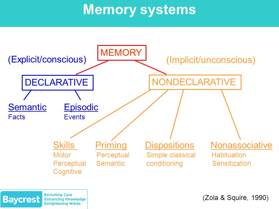 Memory systems MEMORY DECLARATIVE NONDECLARATIVE SemanticEpisodic FactsEvents Skills Priming Dispositions Nonassociative Motor Perceptual Simple classical Habituation Perceptual Semantic conditioning Sensitization Cognitive (Explicit/conscious) (Implicit/unconscious) (Zola & Squire, 1990)