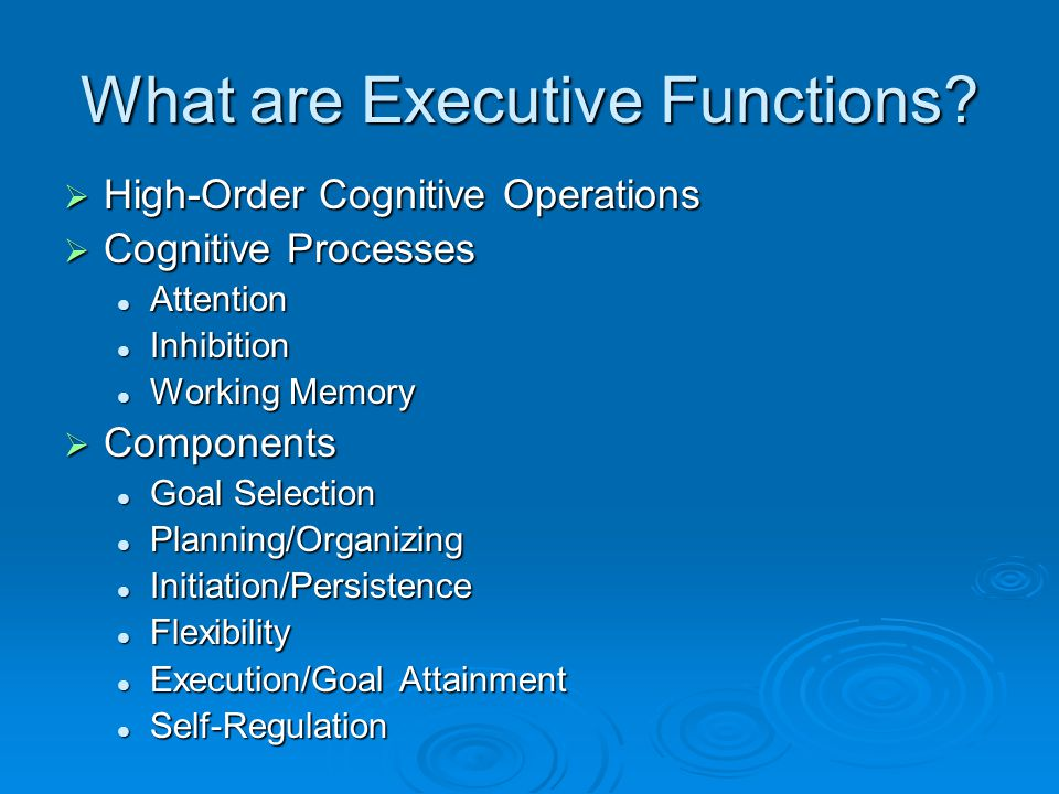What are Executive Functions.
