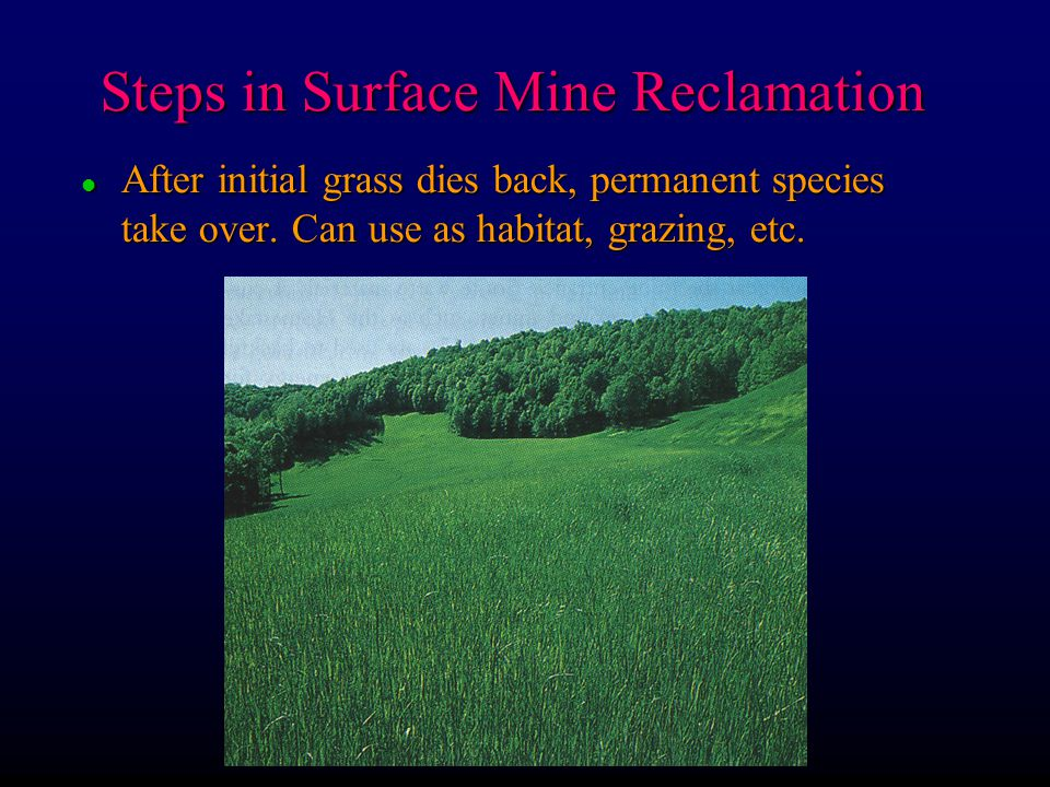 Steps in Surface Mine Reclamation l After initial grass dies back, permanent species take over. Can use as habitat, grazing, etc.