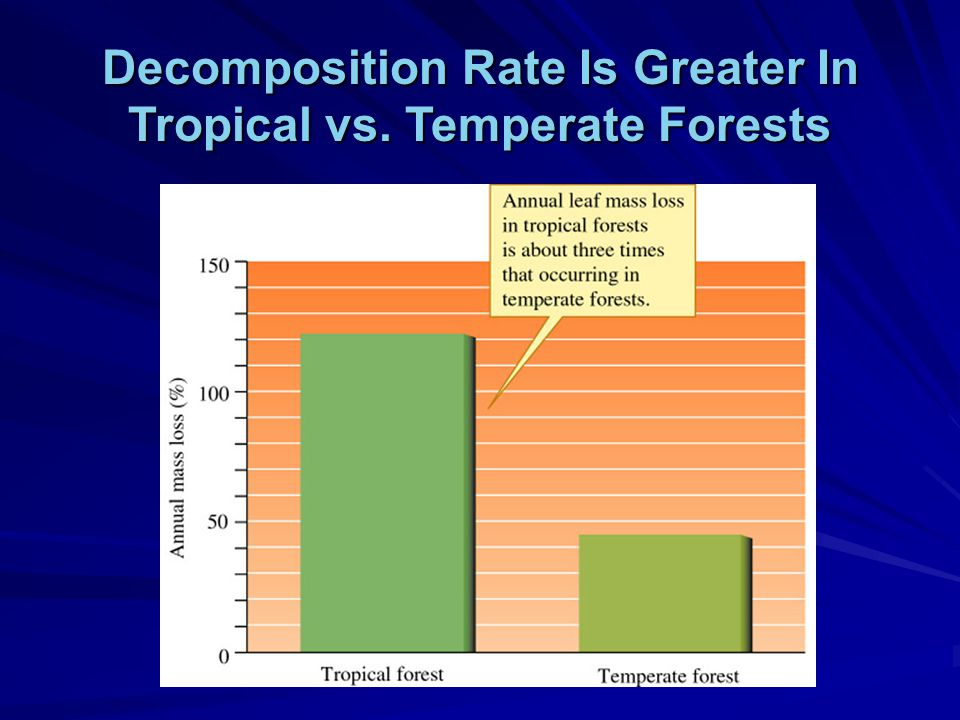 Decomposition Rate Is Greater In Tropical vs. Temperate Forests