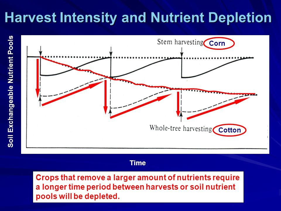 Harvest Intensity and Nutrient Depletion Corn Cotton Soil Exchangeable Nutrient Pools Time Crops that remove a larger amount of nutrients require a longer time period between harvests or soil nutrient pools will be depleted.