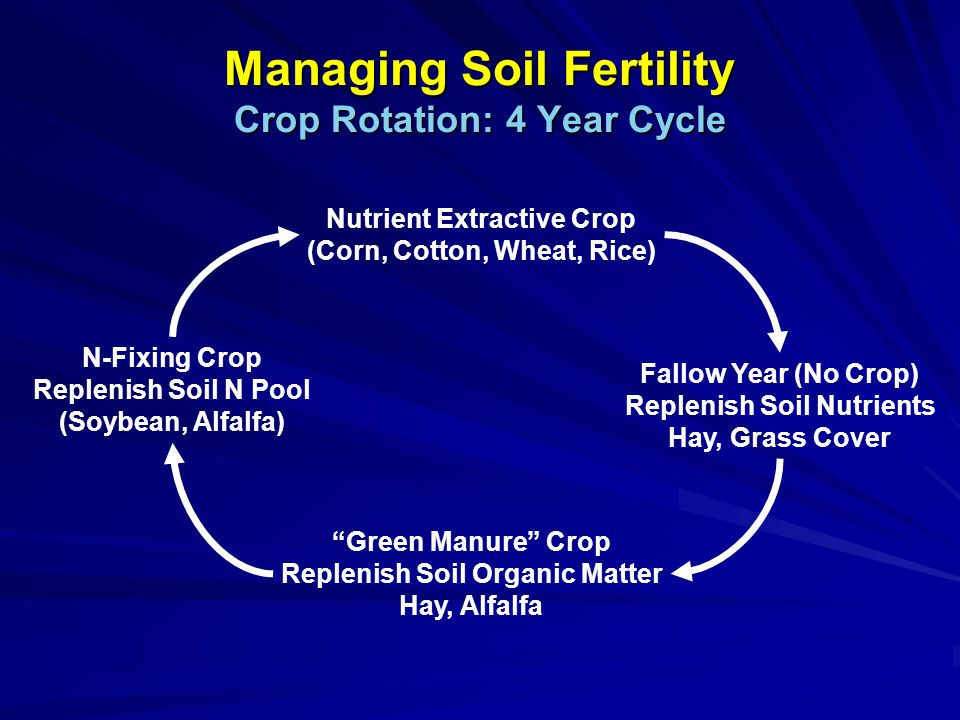 Managing Soil Fertility Crop Rotation: 4 Year Cycle Nutrient Extractive Crop (Corn, Cotton, Wheat, Rice) Fallow Year (No Crop) Replenish Soil Nutrients Hay, Grass Cover Green Manure Crop Replenish Soil Organic Matter Hay, Alfalfa N-Fixing Crop Replenish Soil N Pool (Soybean, Alfalfa)