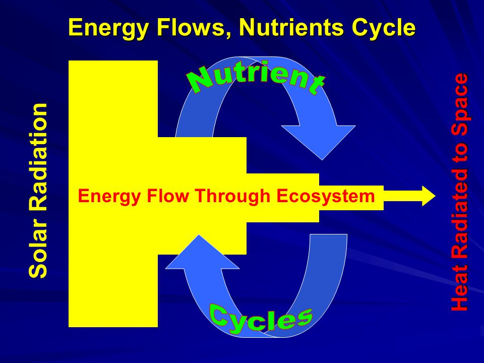 Harvest Interval and Nutrient Depletion Soil Exchangeable Nutrient Pool Time With insufficient time between harvests to allow for natural replenishment, soil nutrient pools are depleted.