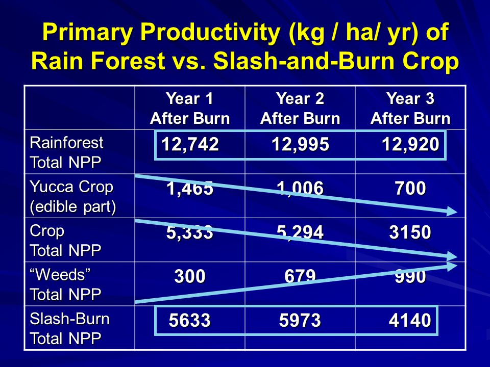 Primary Productivity (kg / ha/ yr) of Rain Forest vs.