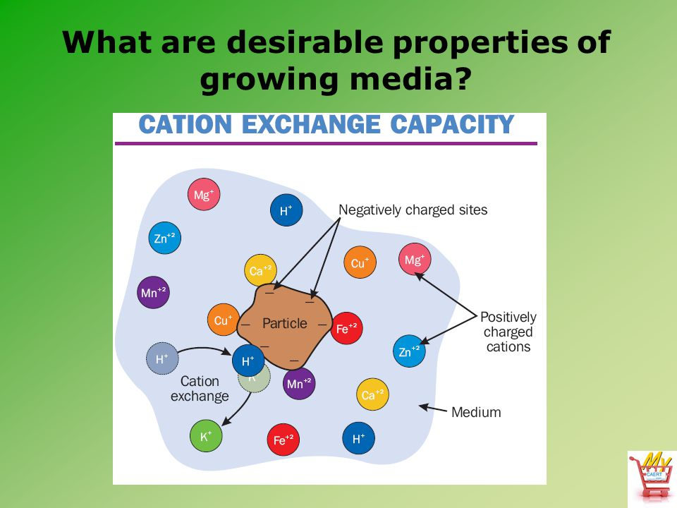 What are desirable properties of growing media?