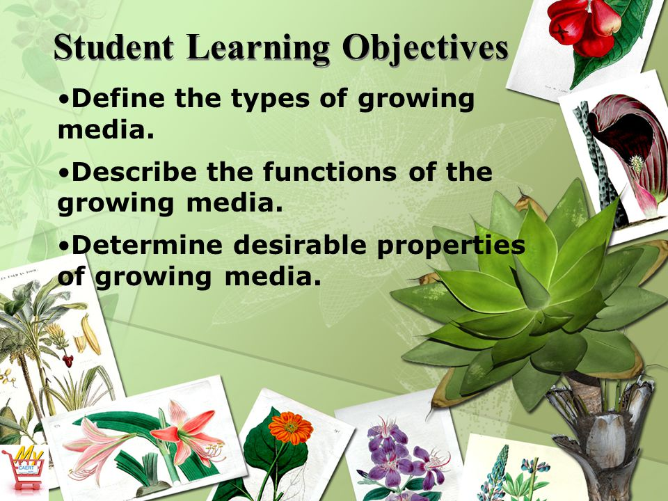 Student Learning Objectives Define the types of growing media.