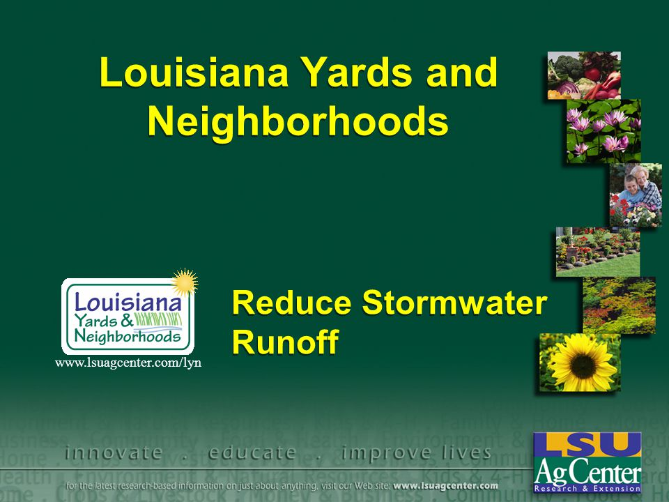 Louisiana Yards and Neighborhoods Reduce Stormwater Runoff www.lsuagcenter.com/lyn