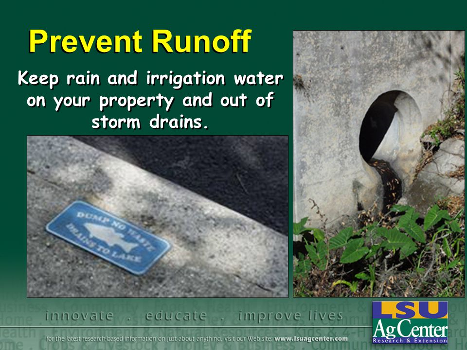 Keep rain and irrigation water on your property and out of storm drains. Prevent Runoff