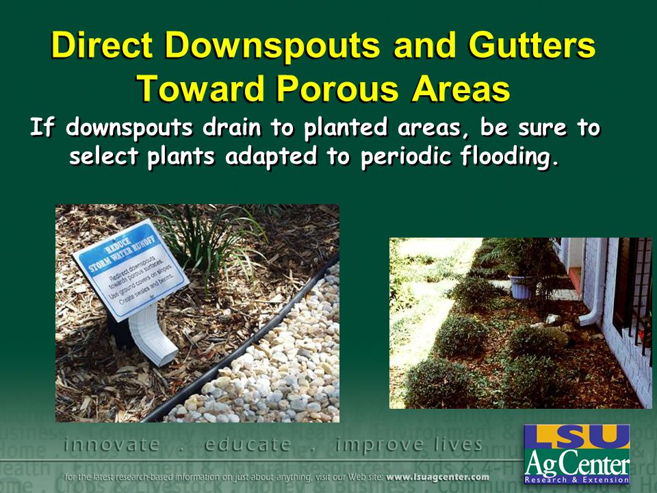 Direct Downspouts and Gutters Toward Porous Areas If downspouts drain to planted areas, be sure to select plants adapted to periodic flooding.