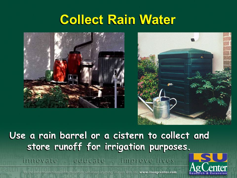 Collect Rain Water Use a rain barrel or a cistern to collect and store runoff for irrigation purposes.
