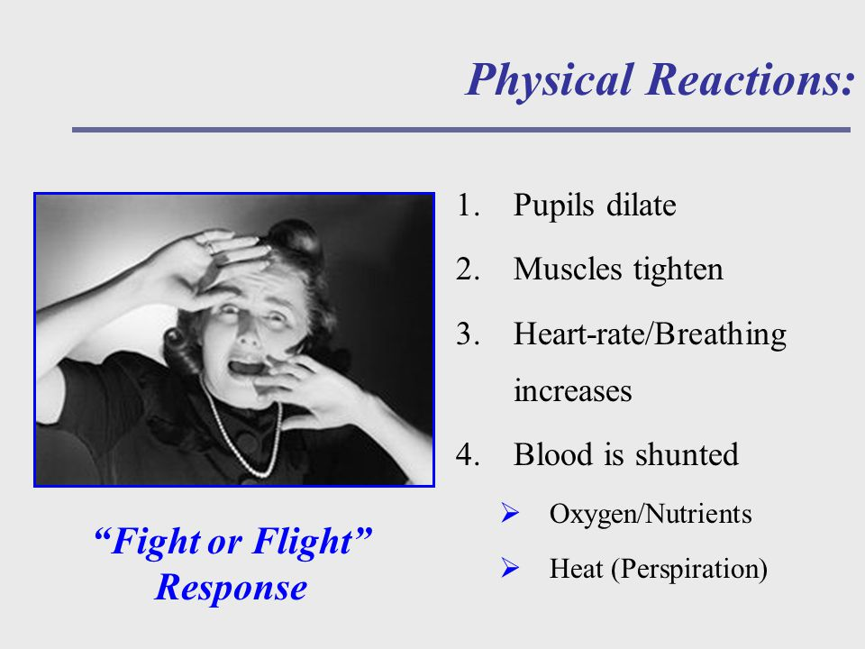 Physical Reactions: 1.Pupils dilate 2.Muscles tighten 3.Heart-rate/Breathing increases 4.Blood is shunted  Oxygen/Nutrients  Heat (Perspiration) Fight or Flight Response