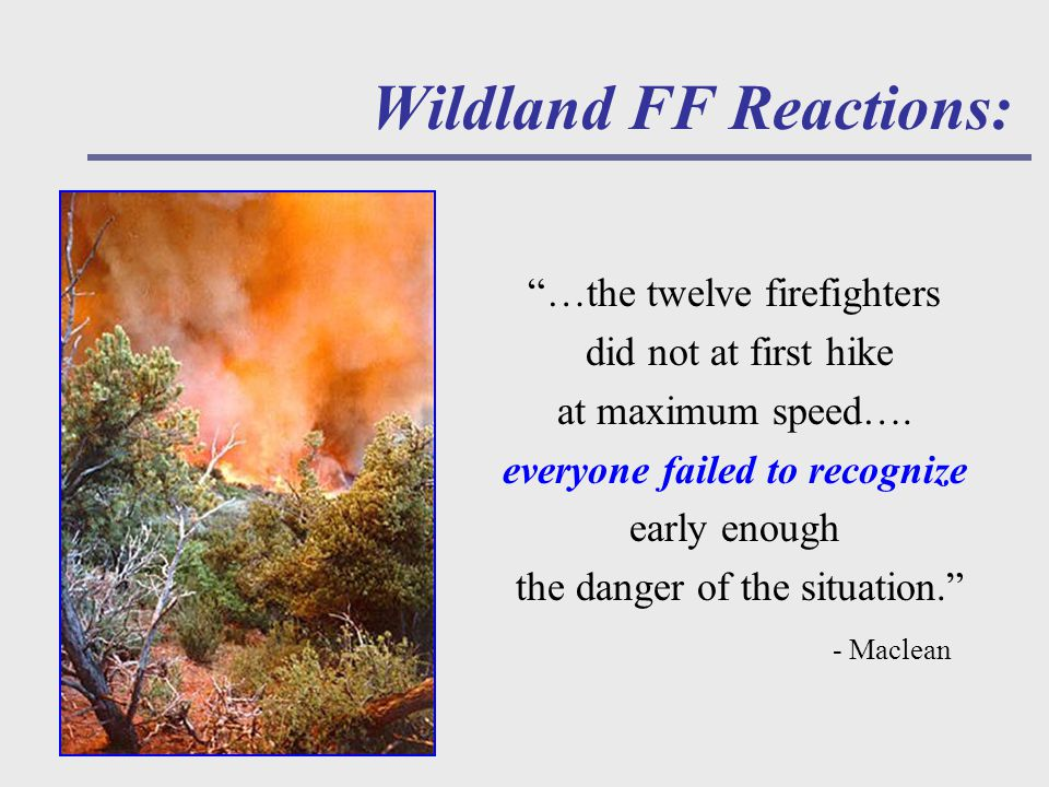 Wildland FF Reactions: …the twelve firefighters did not at first hike at maximum speed….