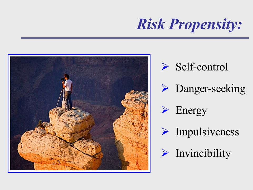 Risk Propensity:  Self-control  Danger-seeking  Energy  Impulsiveness  Invincibility