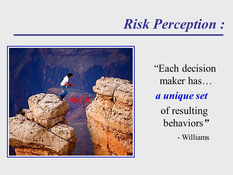 Risk Perception : Each decision maker has… a unique set of resulting behaviors - Williams 900 ft.