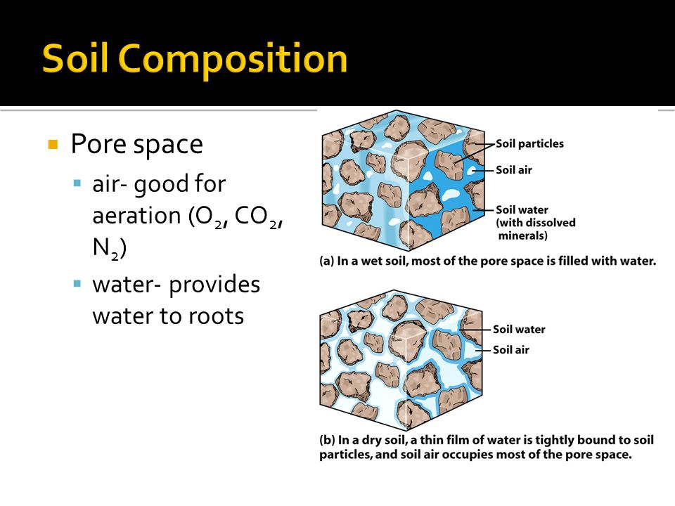  Pore space  air- good for aeration (O 2, CO 2, N 2 )  water- provides water to roots