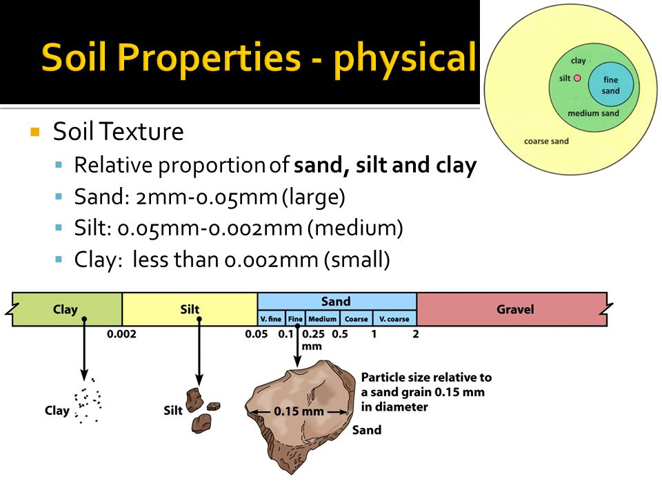  Soil Texture  Relative proportion of sand, silt and clay  Sand: 2mm-0.05mm (large)  Silt: 0.05mm-0.002mm (medium)  Clay: less than 0.002mm (smal