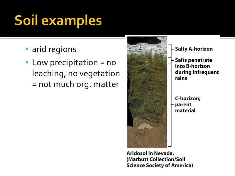  arid regions  Low precipitation = no leaching, no vegetation = not much org. matter