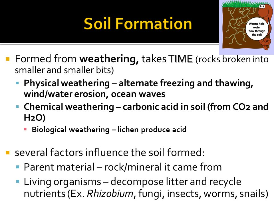  Soil Erosion  Def: wearing away of soil from the land  Caused primarily by water and wind  Why a problem.