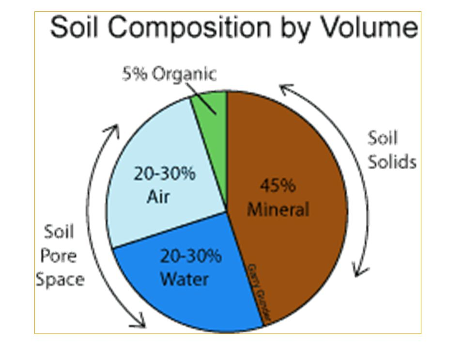  Pore space  air- good for aeration (O 2, CO 2, N 2 )  water- provides water to roots