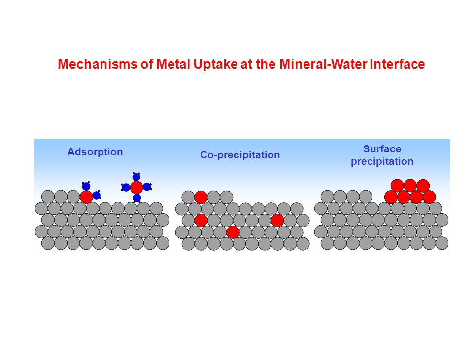 Adsorption Co-precipitation Surface precipitation Mechanisms of Metal Uptake at the Mineral-Water Interface