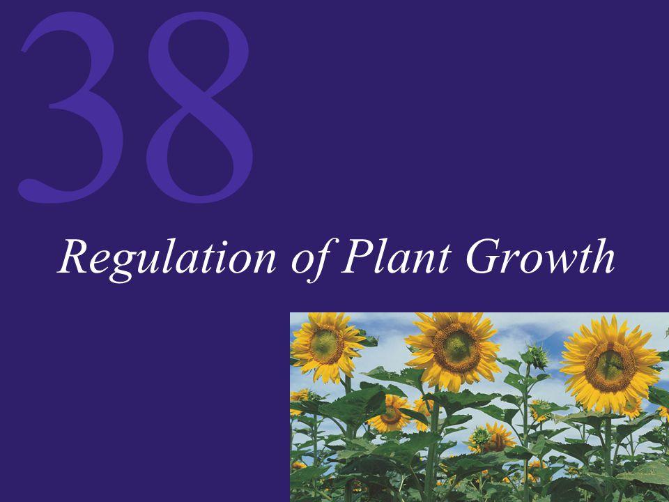 38 Regulation of Plant Growth