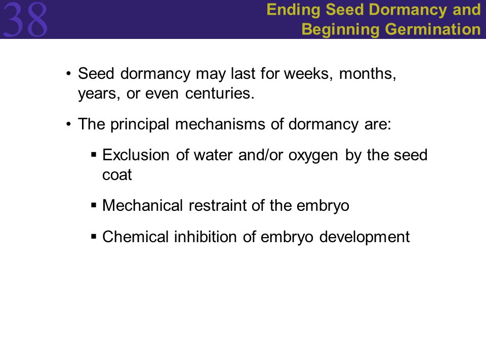 38 Ending Seed Dormancy and Beginning Germination Seed dormancy may last for weeks, months, years, or even centuries.
