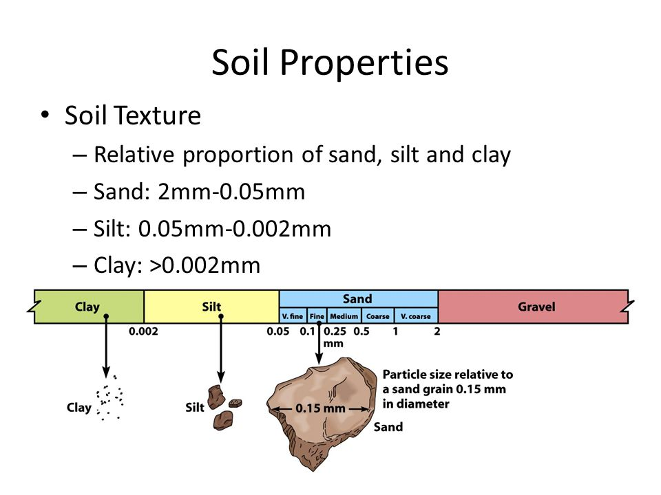 Soil Properties Soil Texture – Relative proportion of sand, silt and clay – Sand: 2mm-0.05mm – Silt: 0.05mm-0.002mm – Clay: >0.002mm