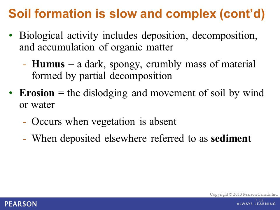 © 2010 Pearson Education Canada Copyright © 2013 Pearson Canada Inc. Soil formation is slow and complex (cont'd) Biological activity includes depositi