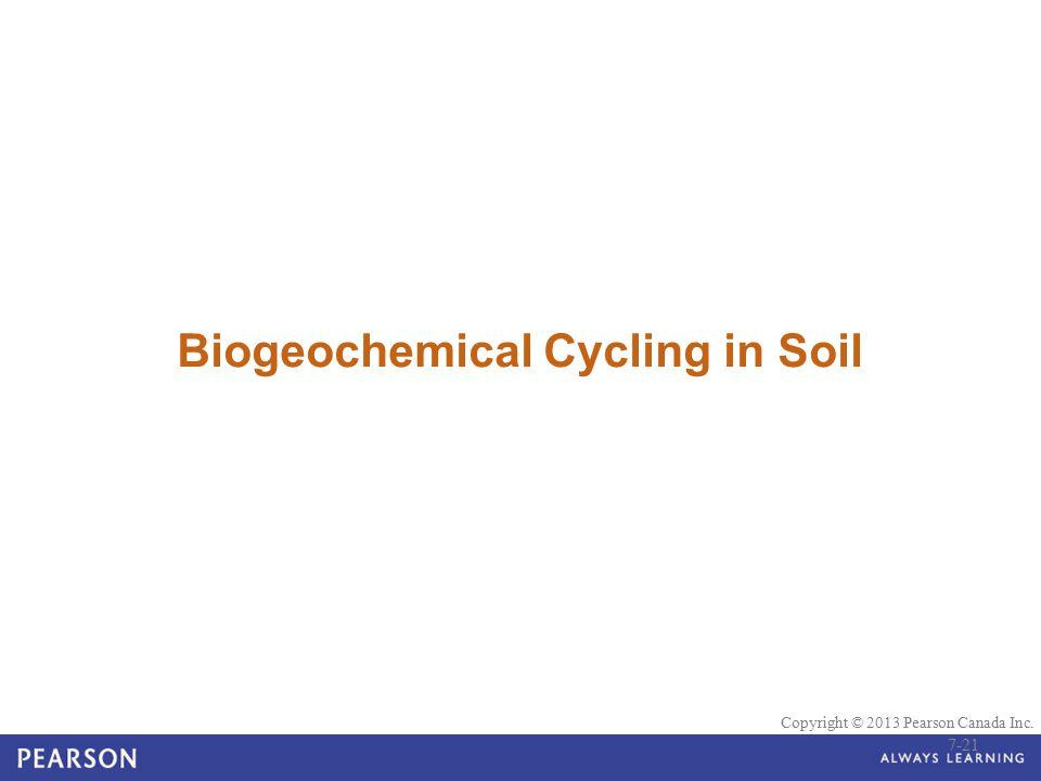 © 2010 Pearson Education Canada Copyright © 2013 Pearson Canada Inc. Biogeochemical Cycling in Soil 7-21