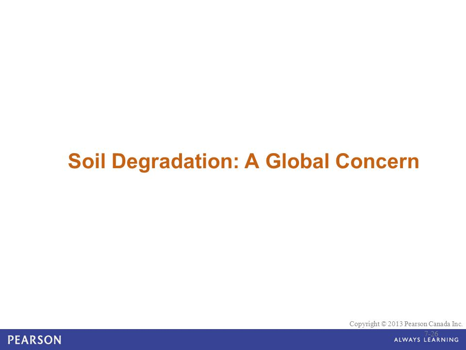© 2010 Pearson Education Canada Copyright © 2013 Pearson Canada Inc. Soil Degradation: A Global Concern 7-26