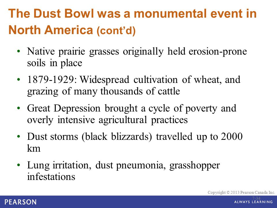 © 2010 Pearson Education Canada Copyright © 2013 Pearson Canada Inc. The Dust Bowl was a monumental event in North America (cont'd) Native prairie gra