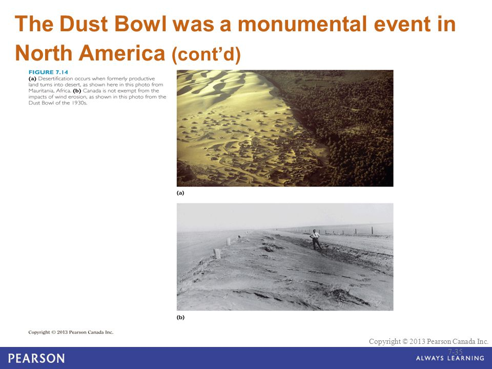 © 2010 Pearson Education Canada Copyright © 2013 Pearson Canada Inc. The Dust Bowl was a monumental event in North America (cont'd) 7-35