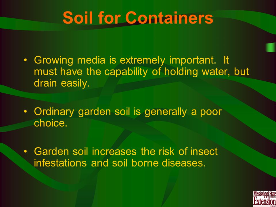 Soil for Containers Growing media is extremely important.
