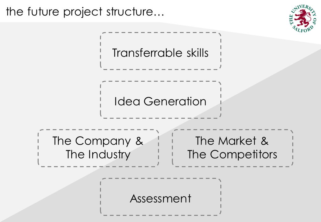 the future project structure… AssessmentIdea Generation The Company & The Industry The Market & The Competitors Transferrable skills