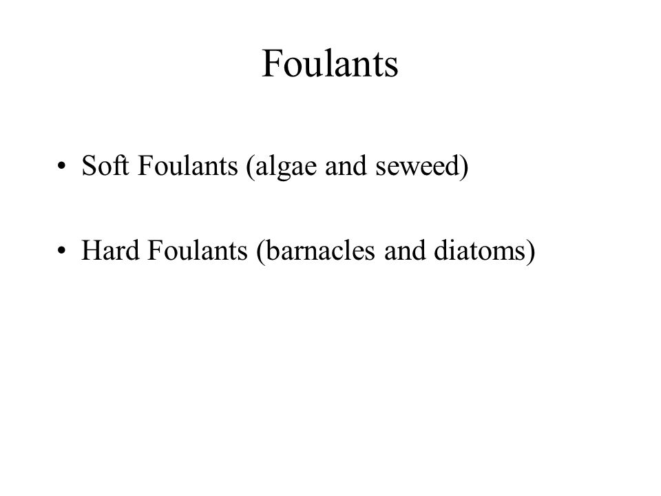 Foulants Soft Foulants (algae and seweed) Hard Foulants (barnacles and diatoms)