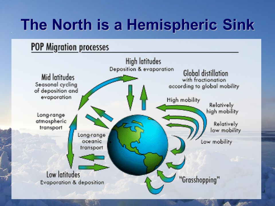 The North is a Hemispheric Sink