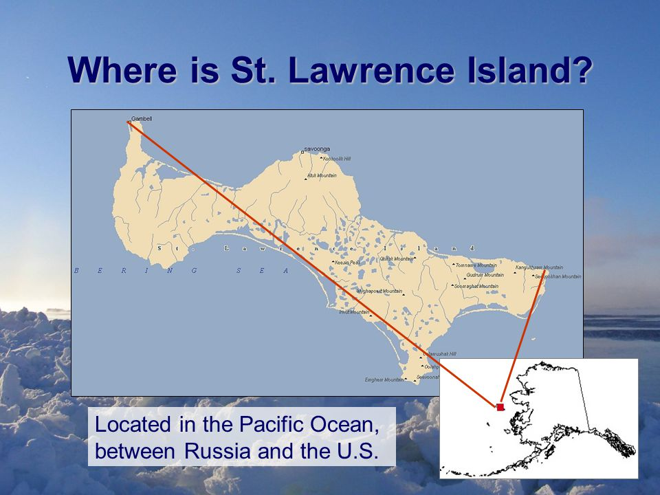 Where is St. Lawrence Island Located in the Pacific Ocean, between Russia and the U.S.