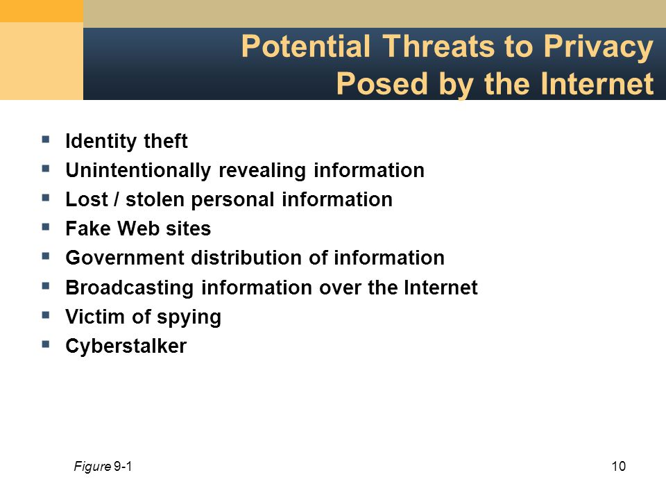 10 Potential Threats to Privacy Posed by the Internet  Identity theft  Unintentionally revealing information  Lost / stolen personal information  Fake Web sites  Government distribution of information  Broadcasting information over the Internet  Victim of spying  Cyberstalker Figure 9-1