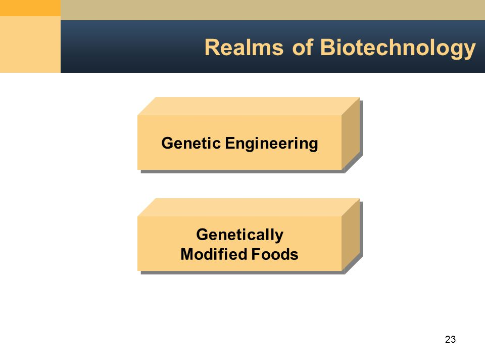 23 Realms of Biotechnology Genetically Modified Foods Genetic Engineering
