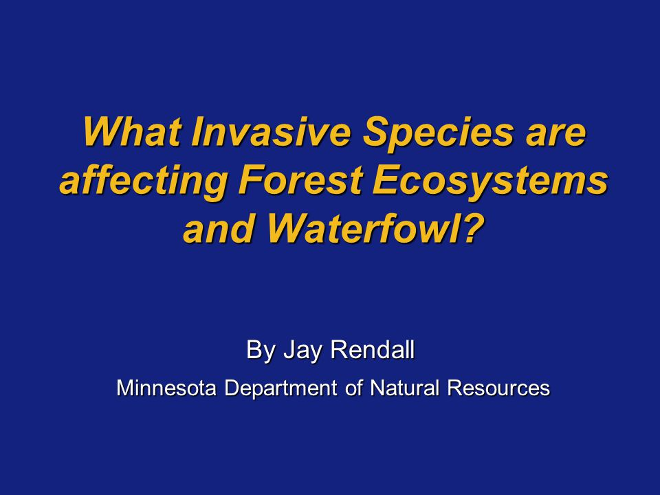 What Invasive Species are affecting Forest Ecosystems and Waterfowl? By Jay Rendall Minnesota Department of Natural Resources Minnesota Department of