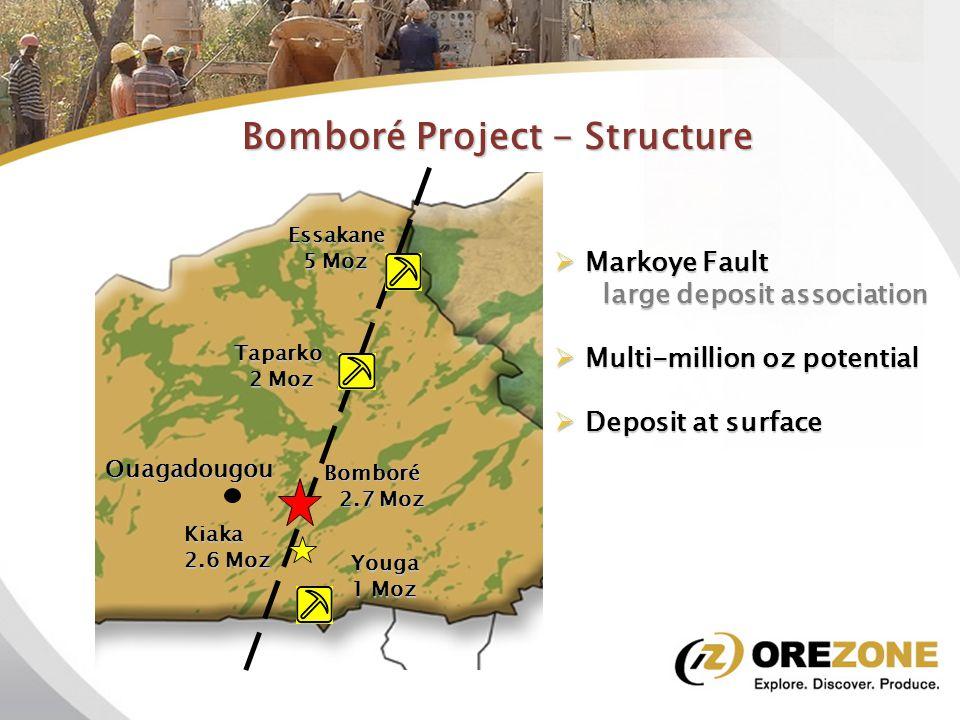 Bomboré Project - Attributes 0.93 Moz Indicated resource  0.93 Moz Indicated resource  1.78 Moz Inferred resource  Average grade <1g/t  Large open pit potential  Low strip ratio  Heap leach/CIL processing  Good infrastructure