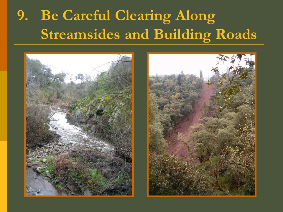 9.Be Careful Clearing Along Streamsides and Building Roads