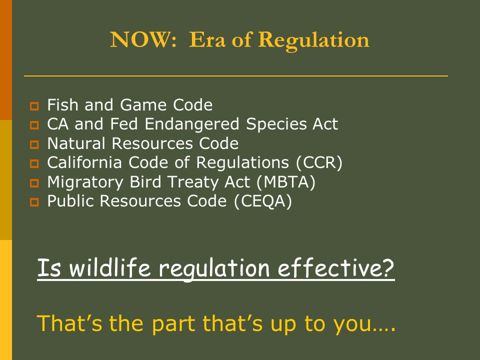 NOW: Era of Regulation  Fish and Game Code  CA and Fed Endangered Species Act  Natural Resources Code  California Code of Regulations (CCR)  Migratory Bird Treaty Act (MBTA)  Public Resources Code (CEQA) Is wildlife regulation effective.