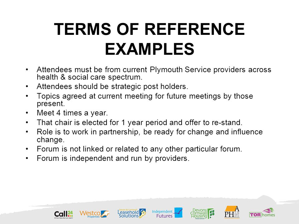 TERMS OF REFERENCE EXAMPLES Attendees must be from current Plymouth Service providers across health & social care spectrum.