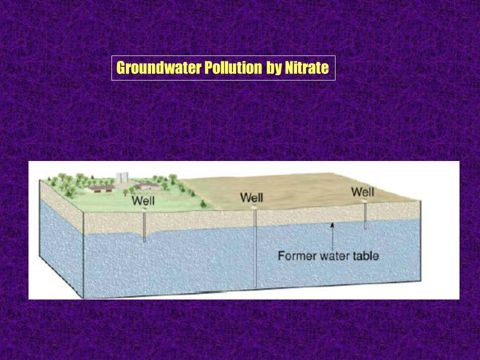 Groundwater Pollution by Nitrate