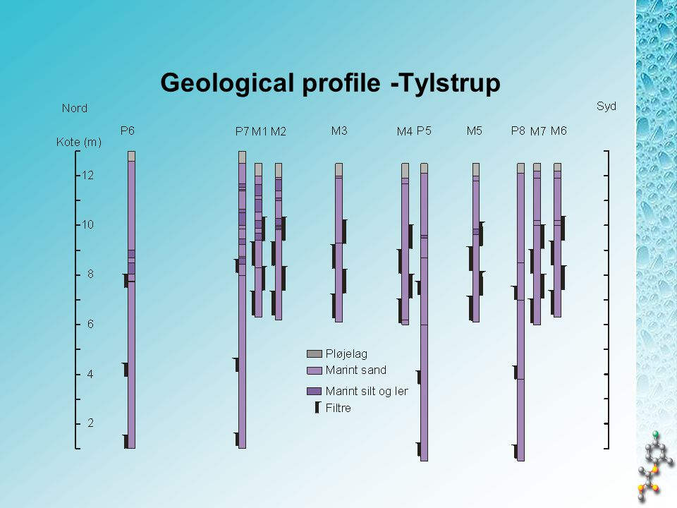 Geological profile -Tylstrup