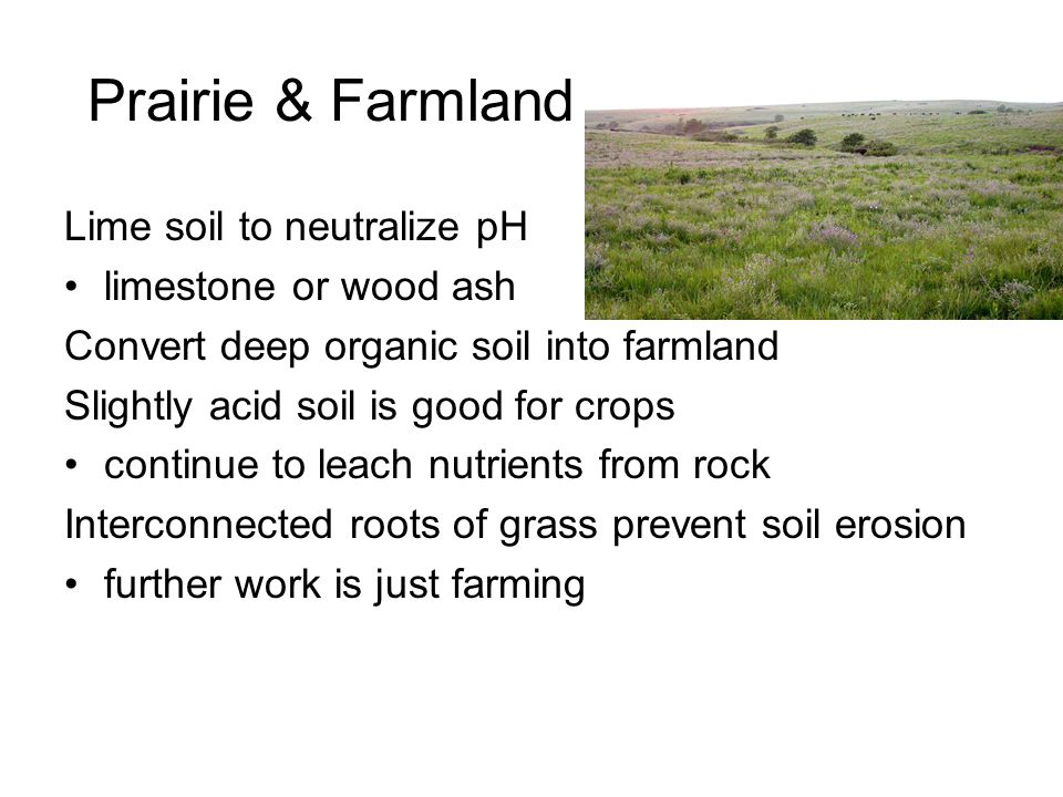 Prairie & Farmland Lime soil to neutralize pH limestone or wood ash Convert deep organic soil into farmland Slightly acid soil is good for crops continue to leach nutrients from rock Interconnected roots of grass prevent soil erosion further work is just farming
