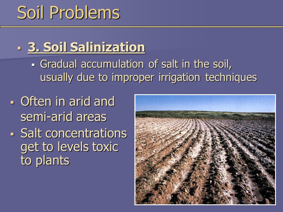  Often in arid and semi-arid areas  Salt concentrations get to levels toxic to plants Soil Problems  3. Soil Salinization  Gradual accumulation of